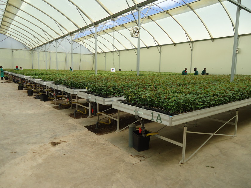 Cultivation systems